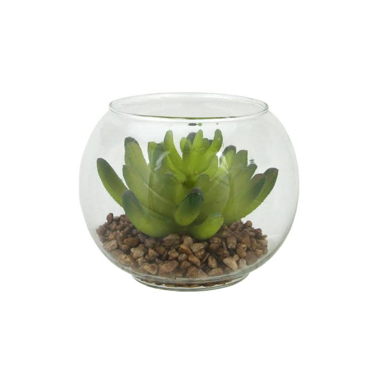 ''4.5'''' Decorative Artificial Green Succulent Plant in Clear Round Glass VASE''