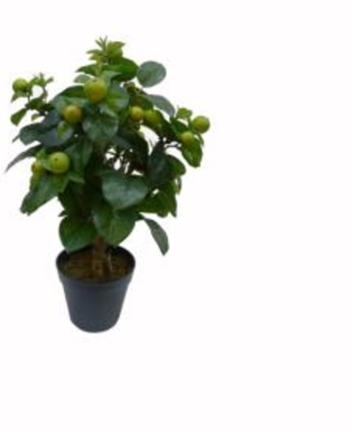 ''28.5'''' Artificial Potted Bonsai Style Decorative Green Apple Tree''